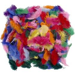 Veertjes diverse kleuren - 50 gram